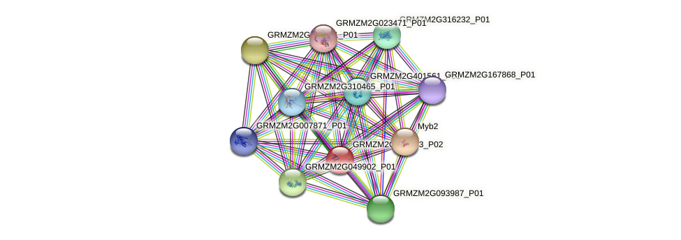 Zm.10872 protein (Zea mays) - STRING interaction network