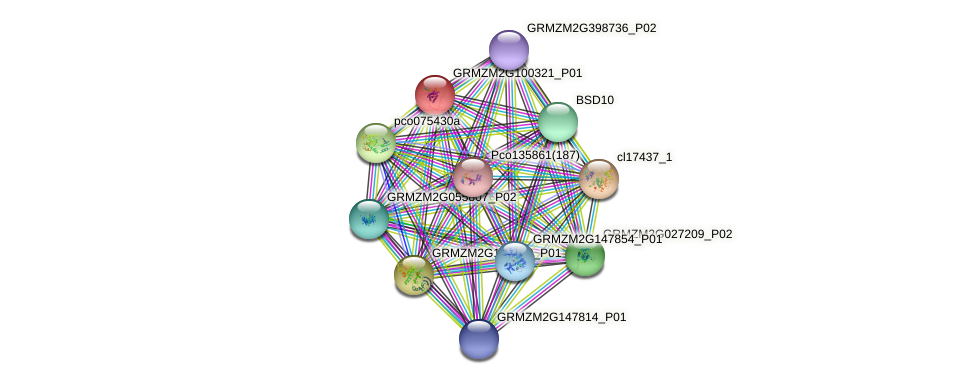 GRMZM2G100321_P01 protein (Zea mays) - STRING interaction network