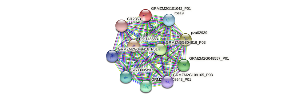 pza00793 protein (Zea mays) - STRING interaction network