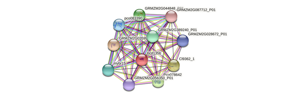bcd135b protein (Zea mays) - STRING interaction network