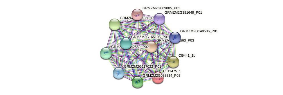 CL11475_1 protein (Zea mays) - STRING interaction network