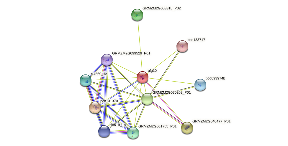 Zm.93850 protein (Zea mays) - STRING interaction network