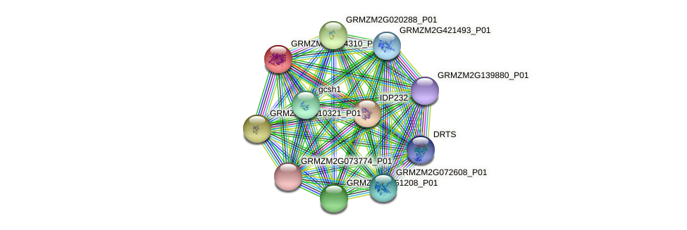 Zm.1072 protein (Zea mays) - STRING interaction network