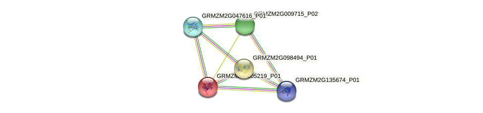103633155 protein (Zea mays) - STRING interaction network