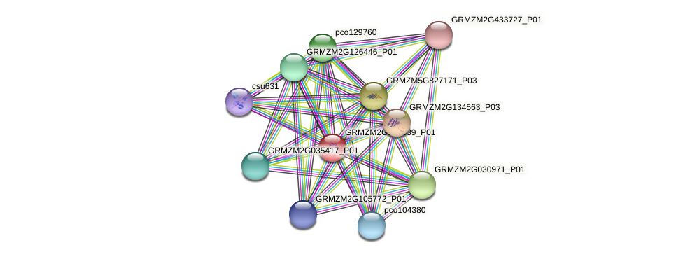 GRMZM2G105539_P01 protein (Zea mays) - STRING interaction network