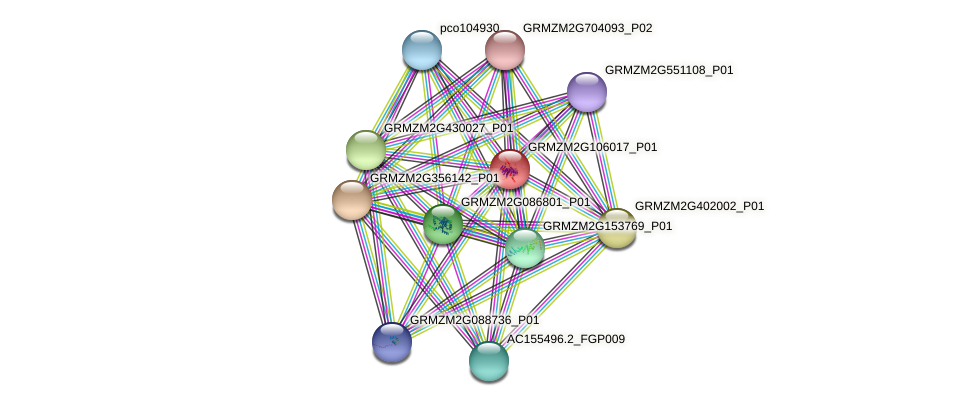 GRMZM2G106017_P01 protein (Zea mays) - STRING interaction network