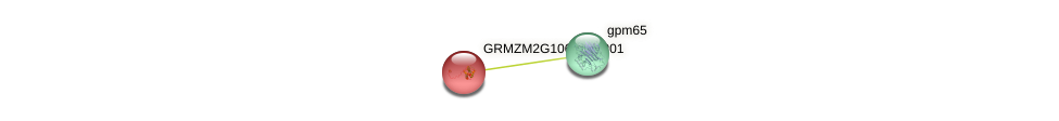 GRMZM2G106324_P01 protein (Zea mays) - STRING interaction network
