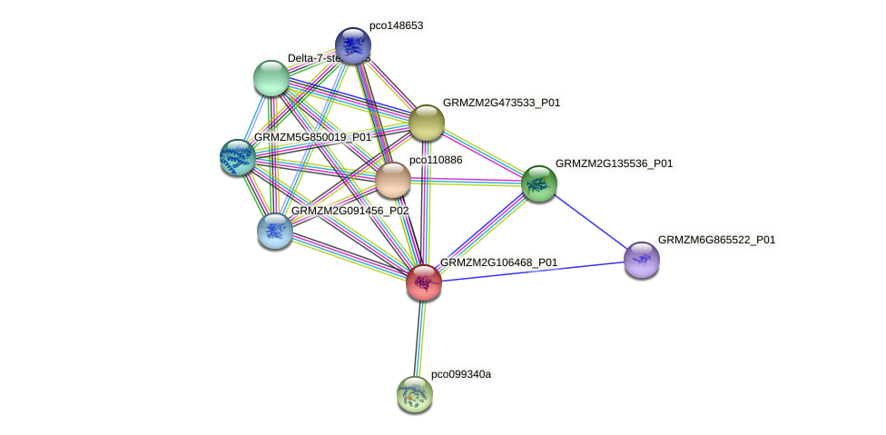 Zm.85861 protein (Zea mays) - STRING interaction network