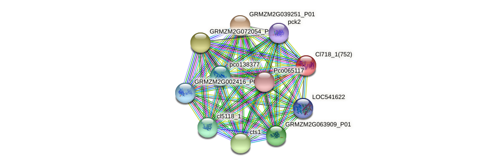 Zm.158400 protein (Zea mays) - STRING interaction network
