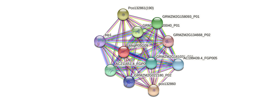 GRMZM2G108259_P01 protein (Zea mays) - STRING interaction network