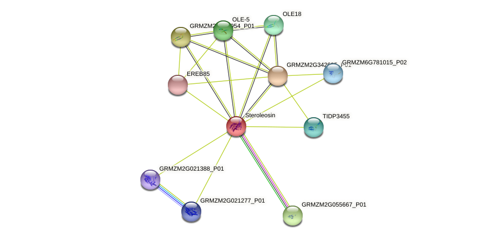 GRMZM2G108338_P01 protein (Zea mays) - STRING interaction network