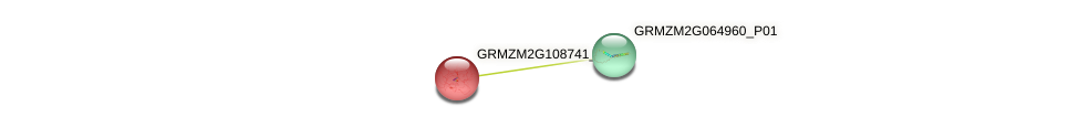 GRMZM2G108741_P01 protein (Zea mays) - STRING interaction network