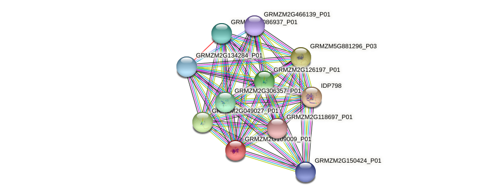 GRMZM2G109009_P01 protein (Zea mays) - STRING interaction network
