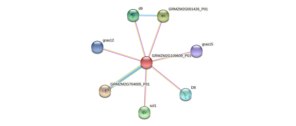 GRMZM2G109609_P01 protein (Zea mays) - STRING interaction network