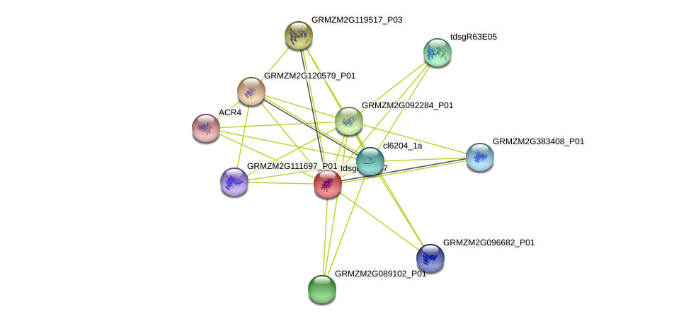 GRMZM2G109821_P01 protein (Zea mays) - STRING interaction network