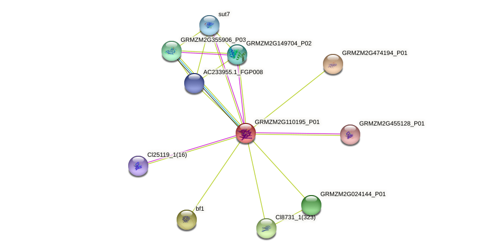 100274520 protein (Zea mays) - STRING interaction network
