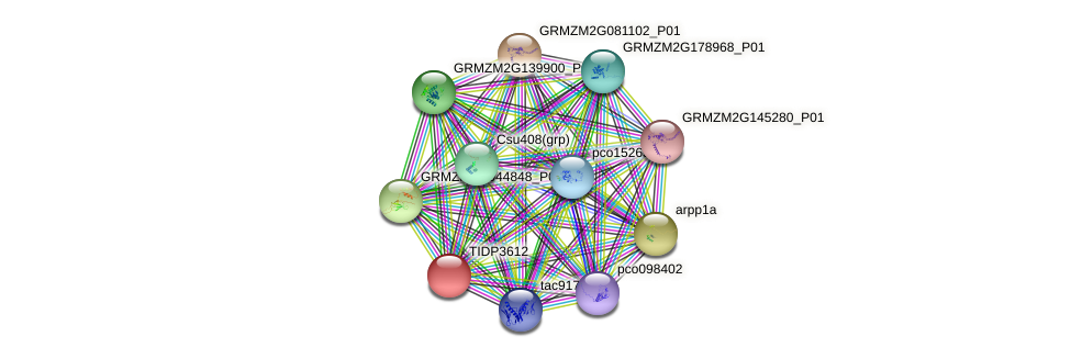TIDP3612 protein (Zea mays) - STRING interaction network
