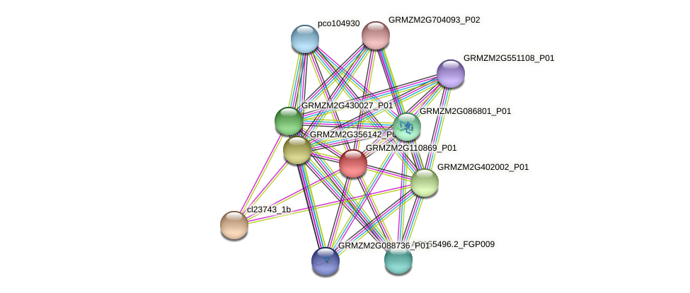 GRMZM2G110869_P01 protein (Zea mays) - STRING interaction network