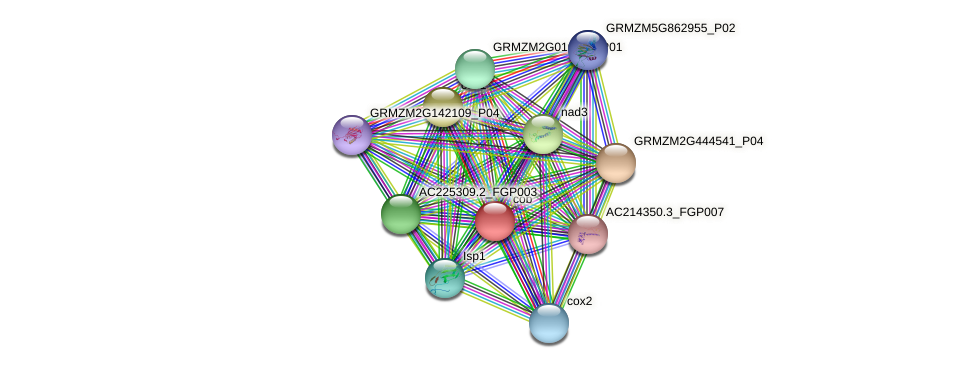 GRMZM2G112030_P01 protein (Zea mays) - STRING interaction network