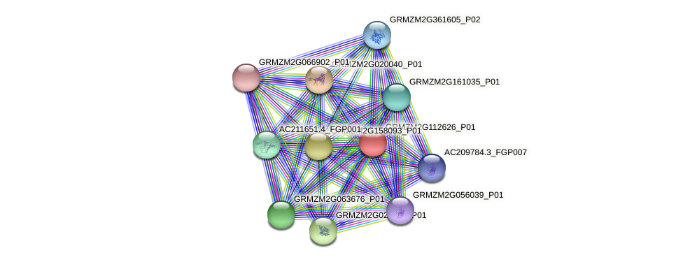 100272398 protein (Zea mays) - STRING interaction network