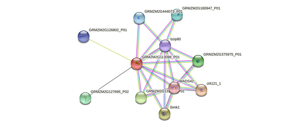 Zm.83947 protein (Zea mays) - STRING interaction network
