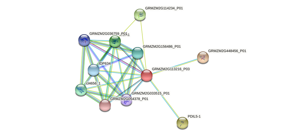 Zm.18471 protein (Zea mays) - STRING interaction network