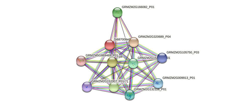 100383902 protein (Zea mays) - STRING interaction network