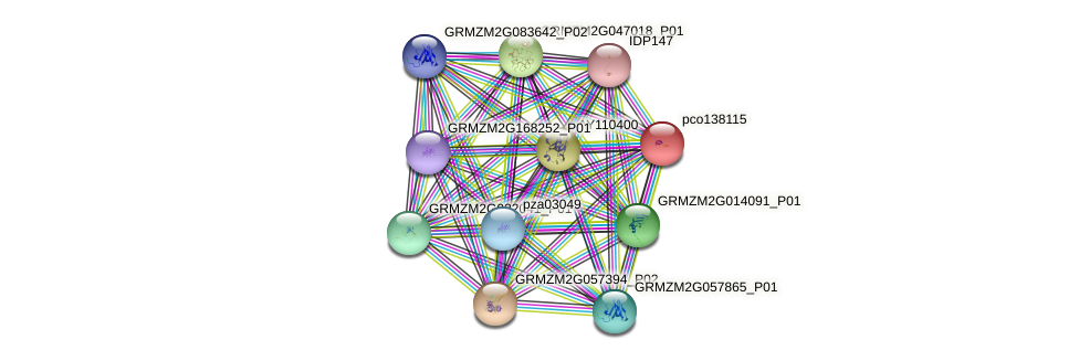 pco138115 protein (Zea mays) - STRING interaction network