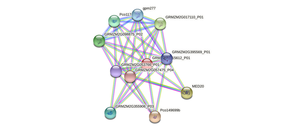 GRMZM2G115612_P01 protein (Zea mays) - STRING interaction network