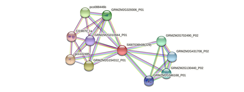 GRMZM2G115615_P01 protein (Zea mays) - STRING interaction network