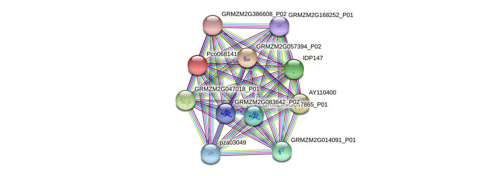 GRMZM2G115925_P01 protein (Zea mays) - STRING interaction network
