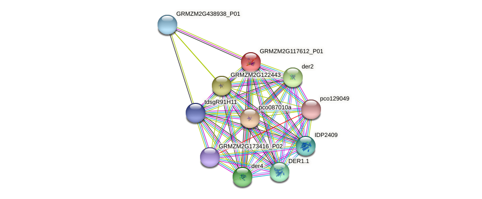 Zm.124074 protein (Zea mays) - STRING interaction network
