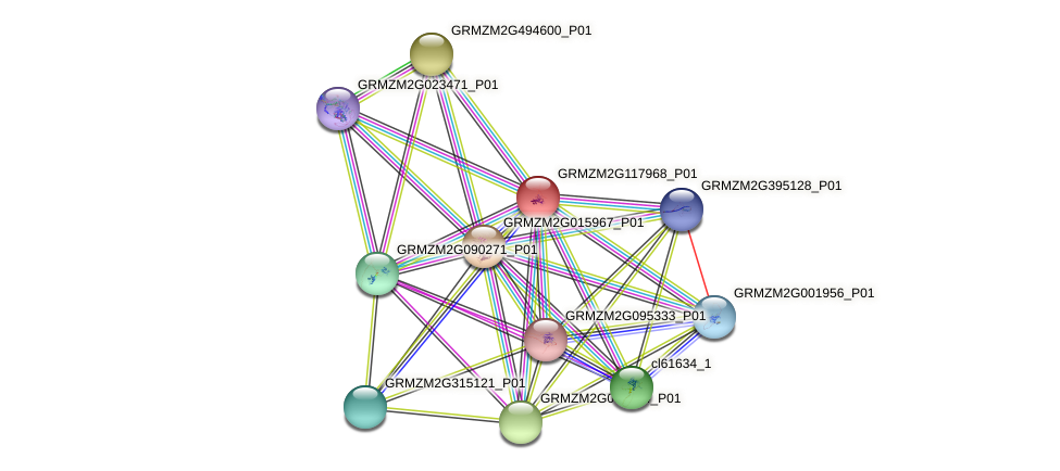 Zm.150753 protein (Zea mays) - STRING interaction network