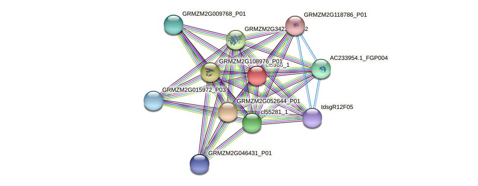 cl8986_1 protein (Zea mays) - STRING interaction network