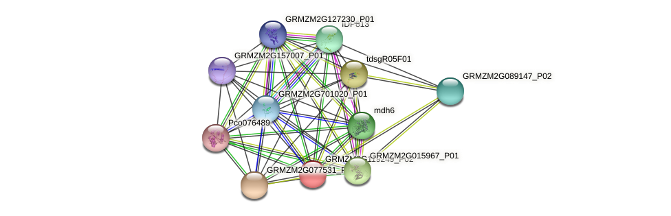 GRMZM2G119249_P02 protein (Zea mays) - STRING interaction network