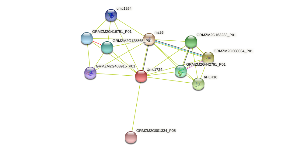 Zm.38659 protein (Zea mays) - STRING interaction network