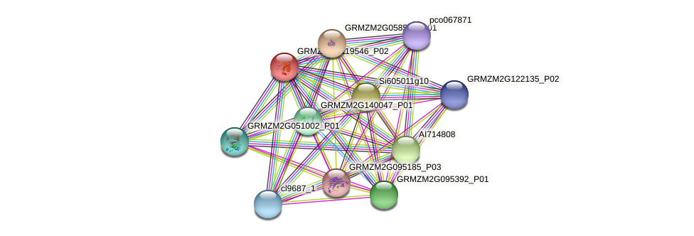 GRMZM2G119546_P01 protein (Zea mays) - STRING interaction network