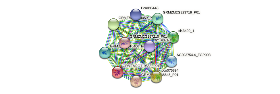 Zm.95463 protein (Zea mays) - STRING interaction network