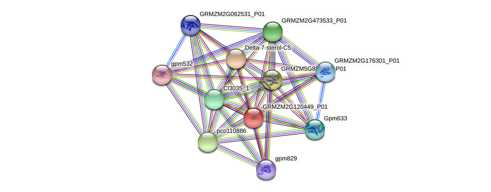 GRMZM2G120449_P01 protein (Zea mays) - STRING interaction network