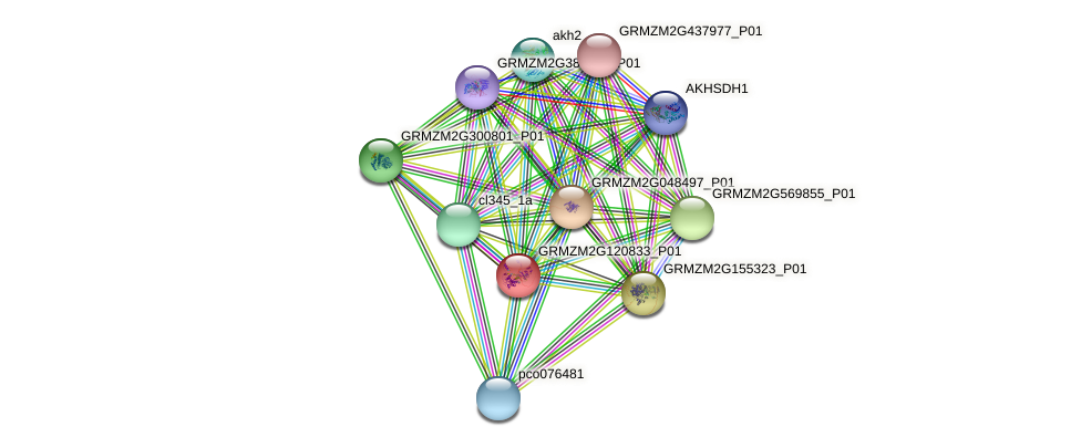GRMZM2G120833_P01 protein (Zea mays) - STRING interaction network