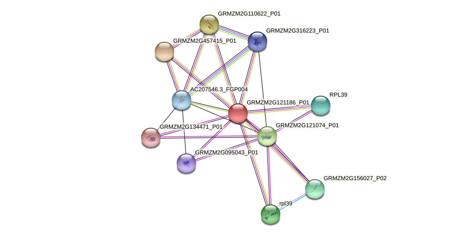 Zm.65054 protein (Zea mays) - STRING interaction network
