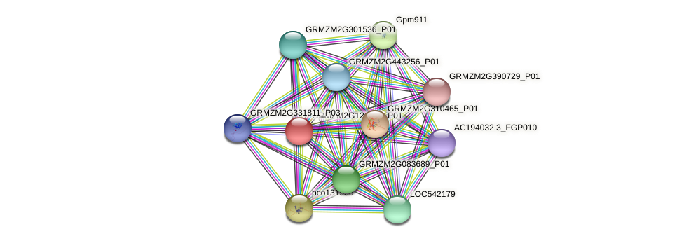 GRMZM2G121269_P01 protein (Zea mays) - STRING interaction network