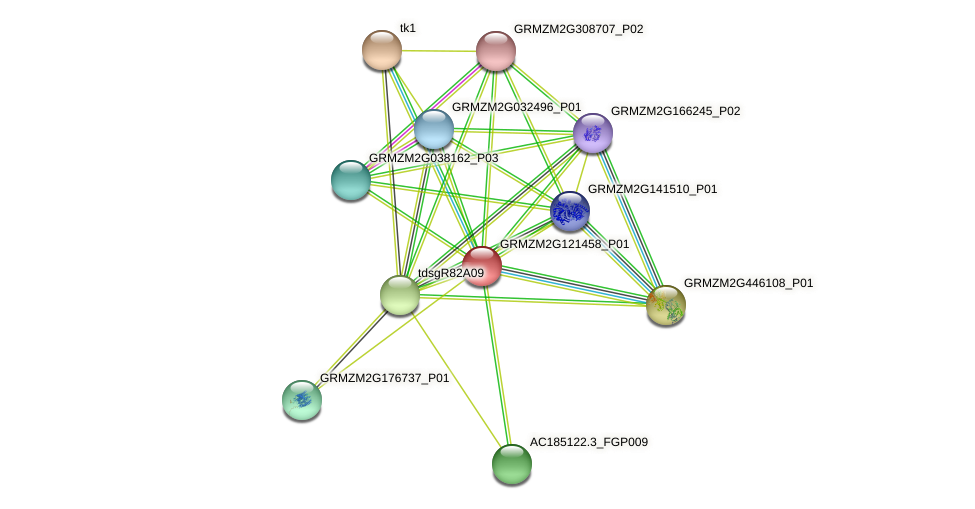 GRMZM2G121458_P01 protein (Zea mays) - STRING interaction network