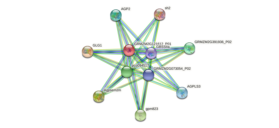 Zm.96321 protein (Zea mays) - STRING interaction network
