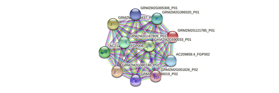 GRMZM2G121785_P01 protein (Zea mays) - STRING interaction network