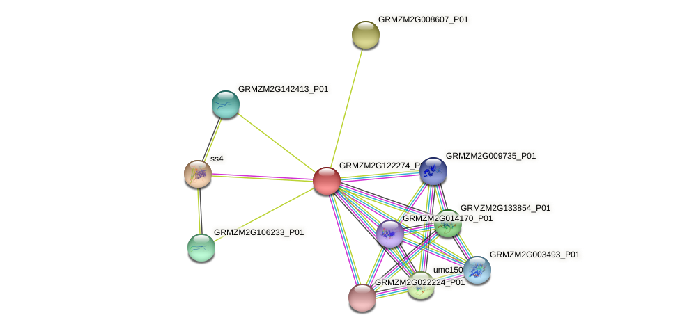 GRMZM2G122274_P01 protein (Zea mays) - STRING interaction network