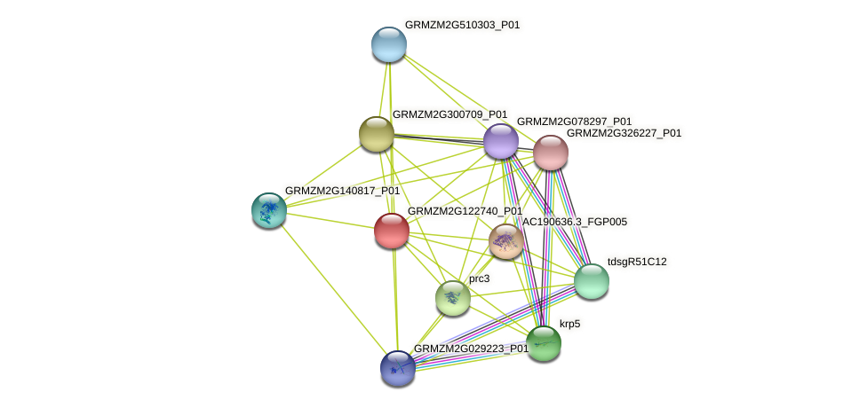 GRMZM2G122740_P01 protein (Zea mays) - STRING interaction network