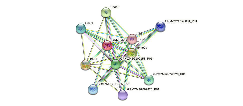 GRMZM2G122787_P02 protein (Zea mays) - STRING interaction network