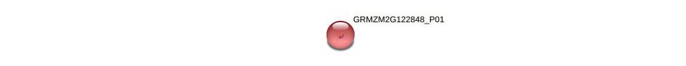 GRMZM2G122848_P01 protein (Zea mays) - STRING interaction network