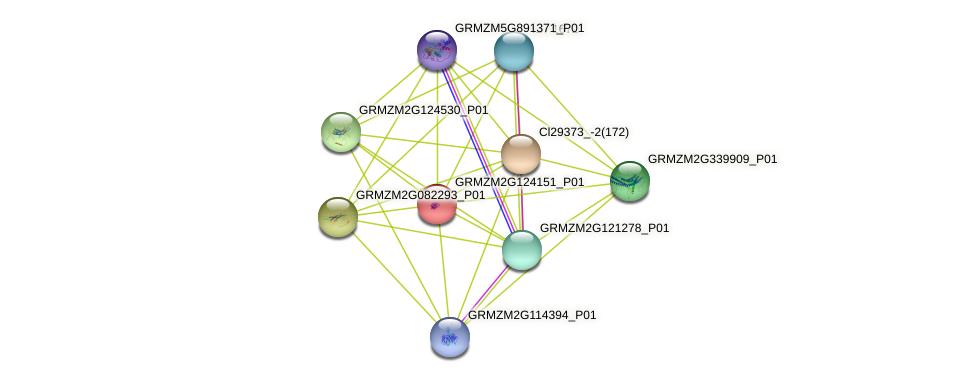 100274672 protein (Zea mays) - STRING interaction network